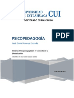 Psicopedagogia Ensayo 30.06.2012