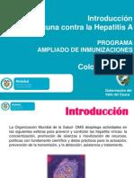 Lineamientos Vacunacion Contra La Hepatitis A