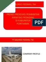 Proses Produksi Pembibitan
