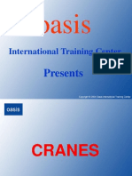 ngi-cranes-part01-091206105658-phpapp02.ppt