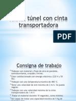 Horno túnel con cinta transportadora