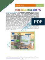 Tecnico en Sistemas Computacionales