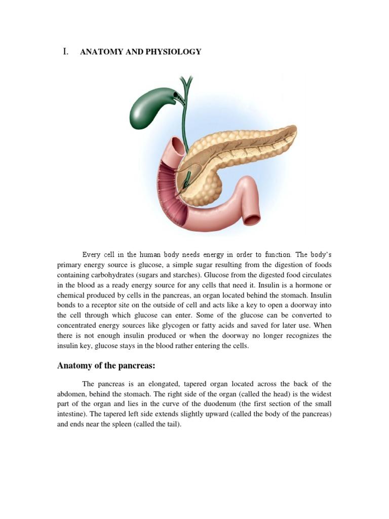 Keme | Pancreas | Insulin