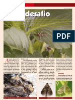 duponchelia fovealis_ revista_cultivarhf2011.pdf