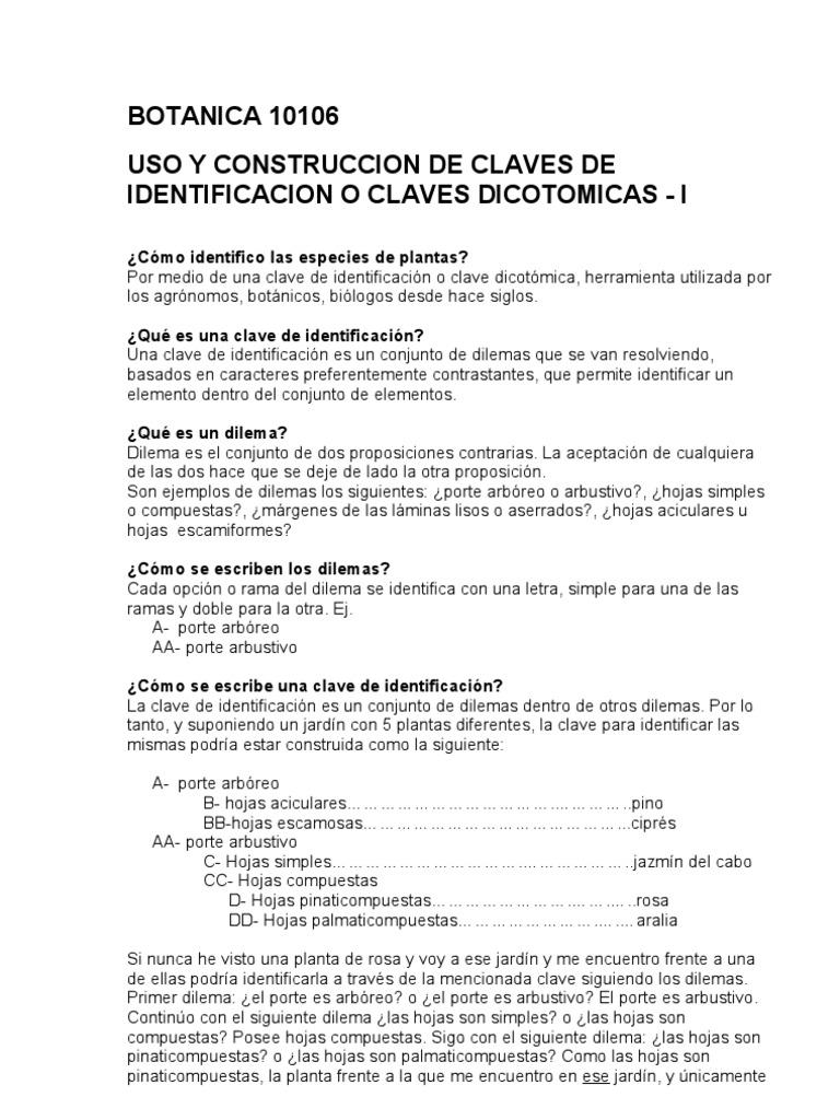 Dorable Claves De Identificación Hoja De Trabajo Ilustración - hoja ...