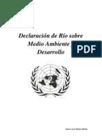 Declaracion de Rio