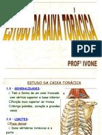Estudocxt..-1
