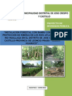 estudio  forestal