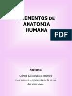 Aula1 Anatomia