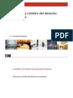 Extensión y límites del derecho de patentes