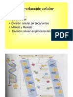 Microsoft PowerPoint - teorica reproducci¢n celular