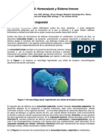 Sistema Inmune - Material Estudio - Seminario - 2010