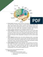 Lobus otak, astrositoma