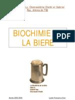 TPE_Biochimie_biere.pdf