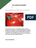 Cómo cultivar tomates, cebollas y papas