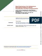 geldanamycin biosynthetic pathway engineering