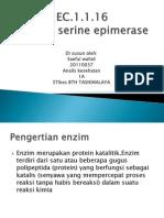 enzim epimerase