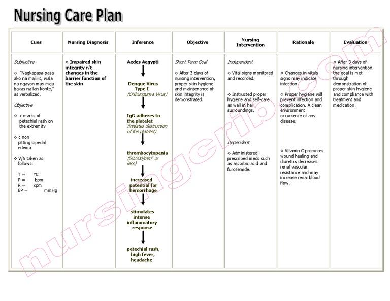 impaired tissue integrity nursing care plan