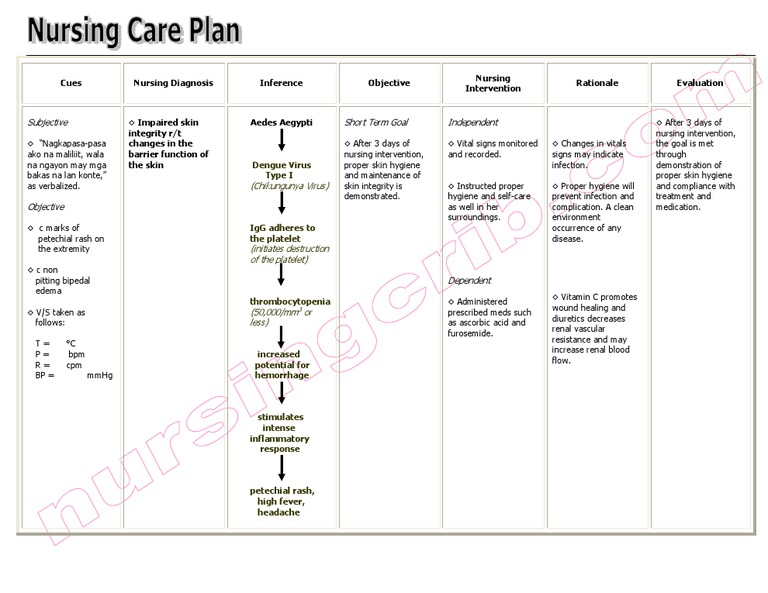 NursingcribCom Nursing Care Plan Impaired Skin Integrity