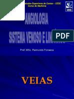 Anatomia - VEIAS