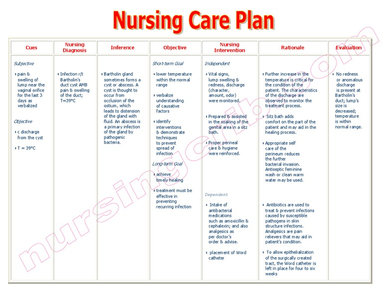 NursingcribCom Nursing Care Plan Infection Bartholins Duct Cyst