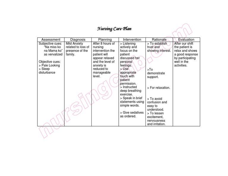 NursingCrib.com Nursing Care Plan Mild Anxiety