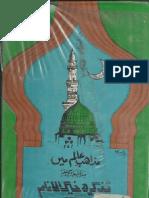 Mazahib e Alam main Tazkira Khairul Anam.pdf