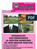 Observador Provincial - Enero 2013