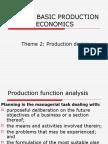 Basic Production Economics