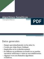 AG Conceptos Basicos