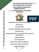 Universidad Nacional Del Altiplano Bachiller Nilton Hoy