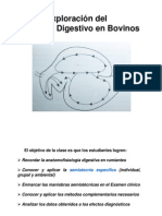 Digestivo Bovino 2011