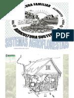 76228848 Apresentacao Agroecologia Agricultura Familiar e Sistemas Agroflorestais by Valdemar Arl