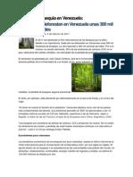 Causas de La Sequia en Venezuela