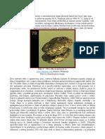 tozla.pdf