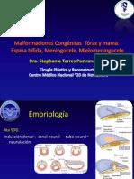 malformacion torax mama, espina bifida meningocele steph 2010.ppt