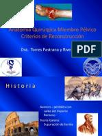 Anatomía Qx Miembro Pelvico y reconstruccion Stephania Torres Pastrana y R.pdf