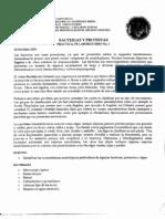 Práctica No. 1 Bacterias y Protista
