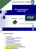 Curso Microchip  - Temas
