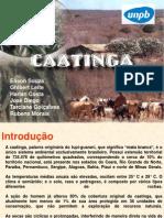 SEMINARIO CAATINGA