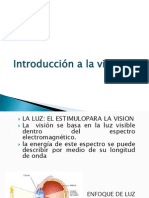 Introduccion a La Vision (2)