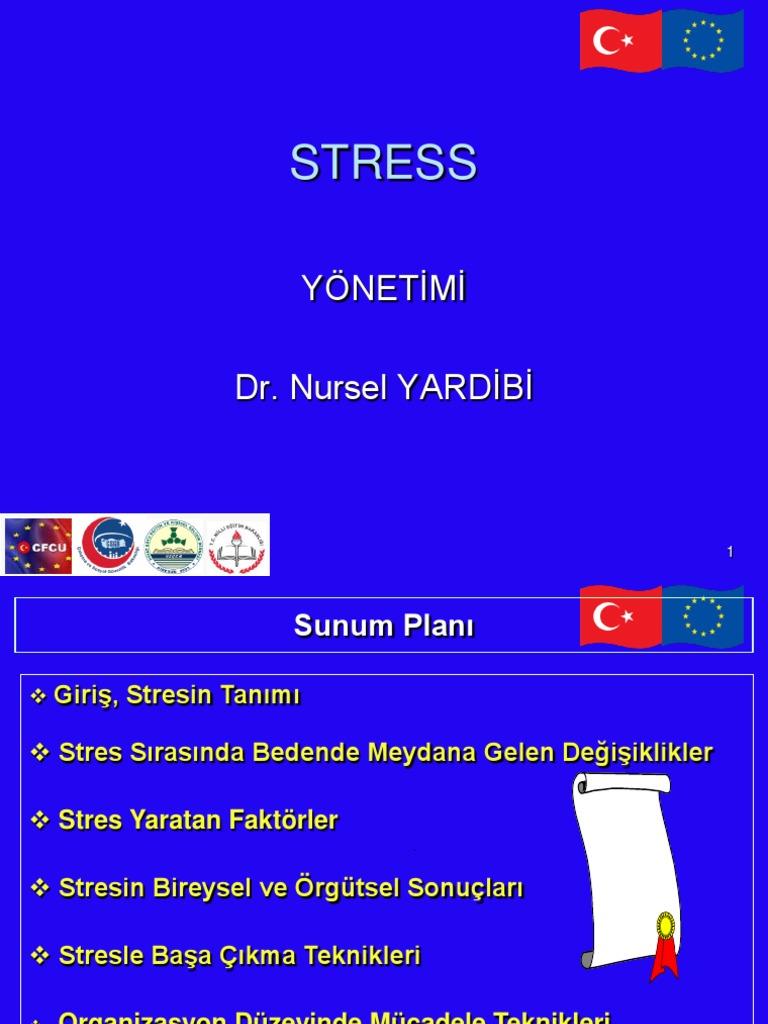 Stresin 13 olumsuz etkisi