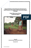 Effectiveness Review: Capacity Building for Rural Enterprise Development for Small Producers, Nicaragua