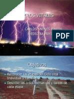Ciclo Vital ECAES.pptx