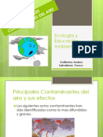 Principales Contaminantes Del Aire y Sus Efectos