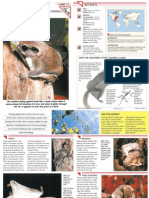 Wildlife Fact File - Mammals - Pgs. 71-80