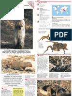 Wildlife Fact File - Mammals - Pgs. 81-90