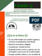 FIEBRE Q PDF.pdf