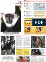Wildlife Fact File - Mammals, Pgs. 111-120