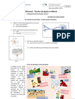 FT_SNH1.pdf
